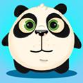 big_icon41